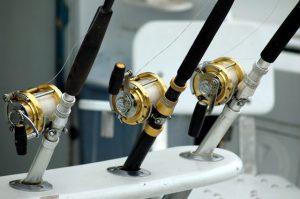 Multiple Fishing Poles