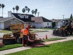 Stump Grinding Newport Beach